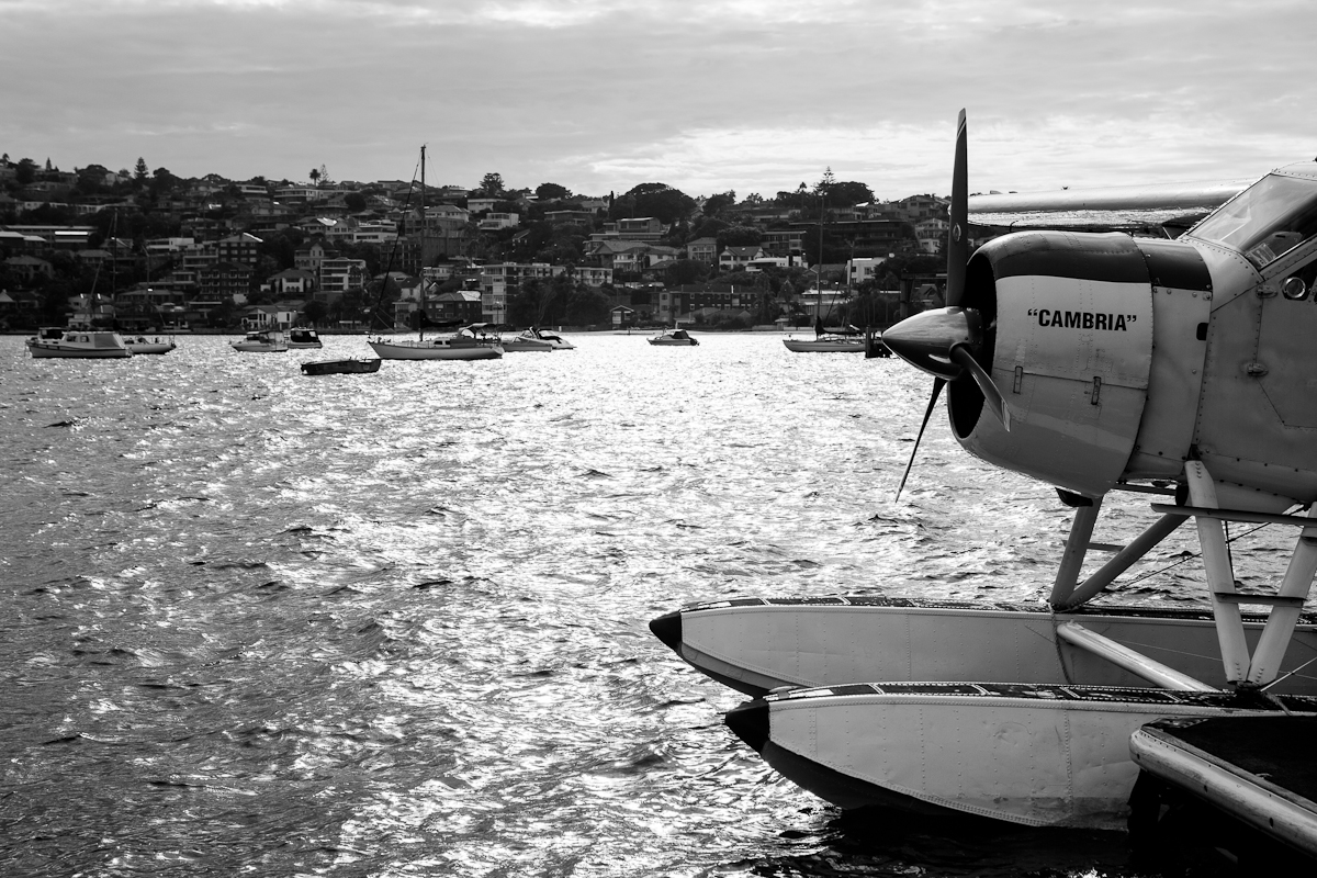 Rose Bay Sea Planes Sydney-1