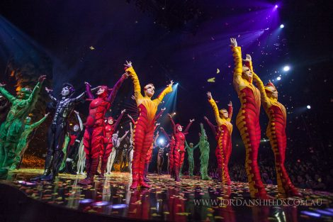 Performers from Cirque Du Soliel's Ovo salute the crowd after their show in Perth, Western Australia.